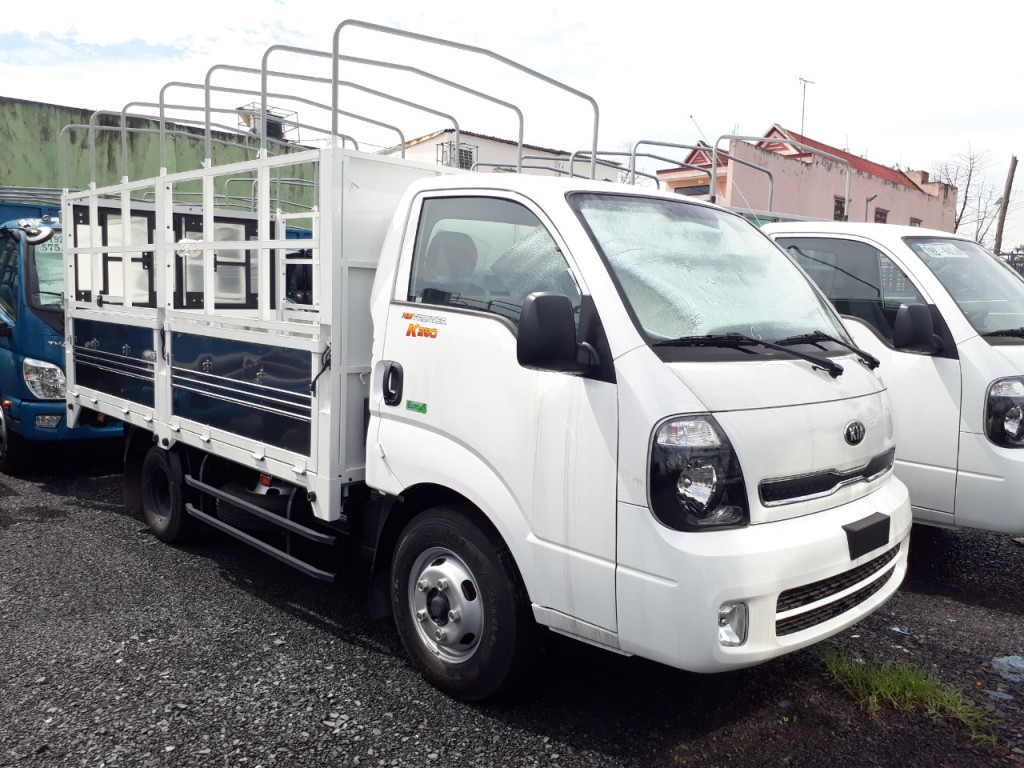 xe-kia-k250-2t5
